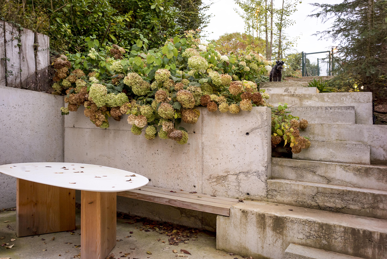 Le jardin, tout en espaliers, a été aménagé avec des gradins en béton.
