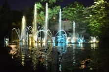 Le Lac aux cygnes de Metz s'illumine chaque soir d'été, du vendredi au dimanche. Deux séances du spectacle son et lumière sont prévus à 22 h 30 et 23 h.