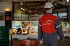 ArcelorMittal prévoit une augmentation de la demande globale d'acier en 2019.