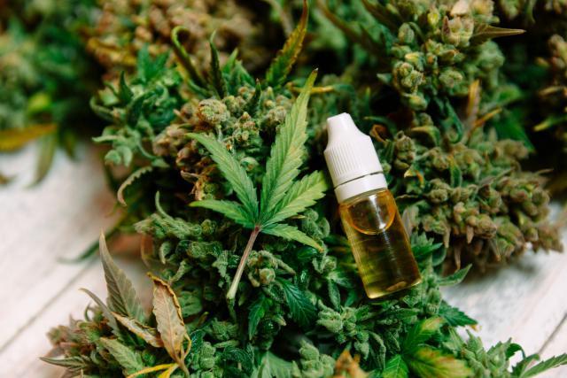 Weedtech cannabis
