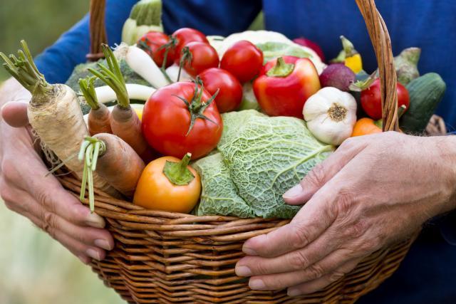 Alors que producteurs de fruits et légumes comme Luc Hoffmann choisissent de vendre leurs productions en grande surface, d'autres comme Sandrine Pingeon, font le choix de ne vendre directement qu'aux particuliers.
